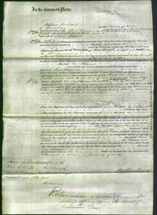 Court of Common Pleas - Jane Sheppard-Original Ancestry