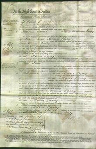 Court of Common Pleas - Maria Lacey-Original Ancestry