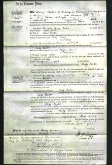 Court of Common Pleas - Betty Parker-Original Ancestry