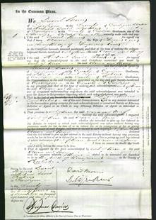 Court of Common Pleas - Anna Evans and Mary Evans-Original Ancestry