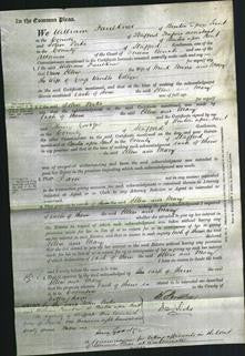 Court of Common Pleas - Ellen Moore and Mary Collyer-Original Ancestry