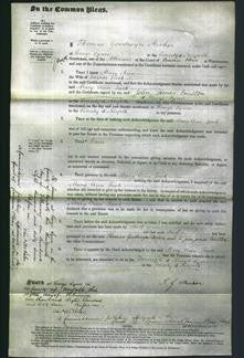 Court of Common Pleas - Mary Ann Tuck-Original Ancestry