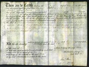 Court of - Catherine Saxton-Original Ancestry