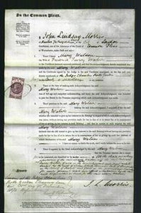 Court of Common Pleas - Mary Watson-Original Ancestry