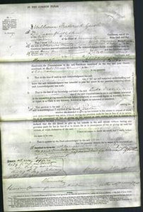 Court of Common Pleas - Ann Maton-Original Ancestry