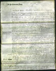 Court of Common Pleas - Mary Addison-Original Ancestry