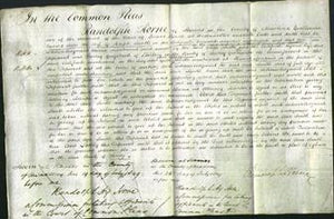 Court of Common Pleas - Ann Smith-Original Ancestry