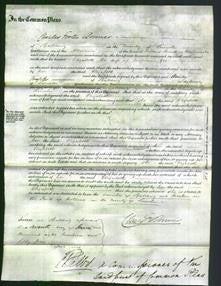 Court of Common Pleas - Elizabeth Gee-Original Ancestry