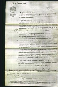 Court of Common Pleas - Annette Golds-Original Ancestry