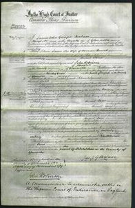 Court of Common Pleas - Jane Barrett-Original Ancestry