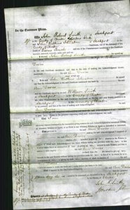 Court of Common Pleas - Ann Davies-Original Ancestry