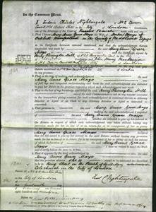 Court of Common Pleas - Mary Ann Grace Mayo-Original Ancestry