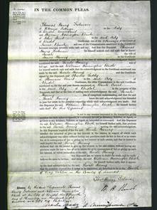 Court of Common Pleas - Sarah Harvey-Original Ancestry