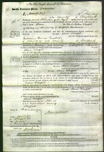 Court of Common Pleas - Ann Wright-Original Ancestry