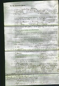 Court of Common Pleas - Ann Patching-Original Ancestry