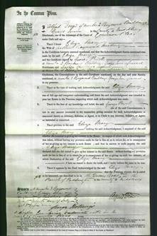 Court of Common Pleas - Eliza Mary Harding-Original Ancestry