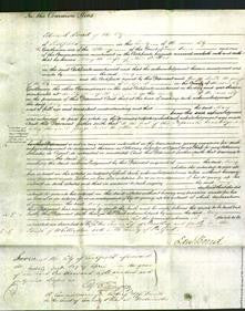 Court of Common Pleas - Mary Billins-Original Ancestry