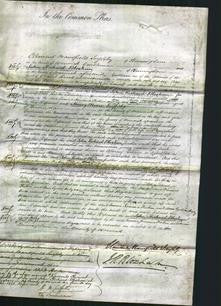 Court of Common Pleas - Emma Jemima Firkin and Ann Lydia Heeley-Original Ancestry