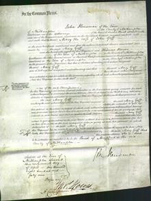 Court of Common Pleas - Mary Goff-Original Ancestry