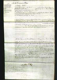 Court of Common Pleas - Anne Joanna MacBean-Original Ancestry