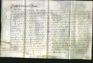 Court of Common Pleas - Frances Pethick, Jane Pethick, Elizabeth Thomas and Jane Palmer-Original Ancestry