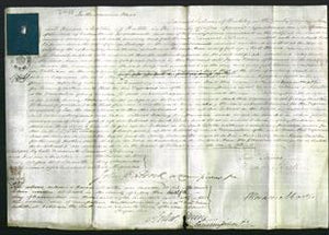 Court of Common Pleas - Anne Bishopp-Original Ancestry