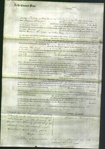 Court of Common Pleas - Maria May-Original Ancestry