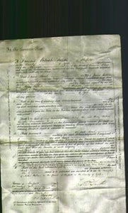 Court of Common Pleas - Sarah Bell-Original Ancestry