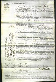 Court of Common Pleas - Mary Ann Steer-Original Ancestry