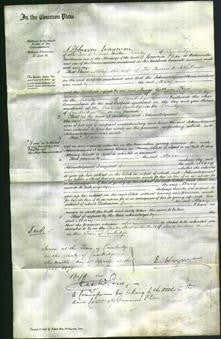 Court of Common Pleas - Mary Amps-Original Ancestry