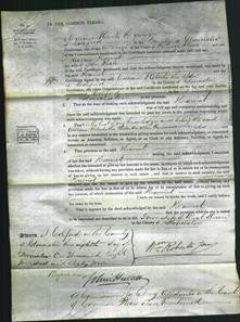 Court of Common Pleas - Harriet Heale-Original Ancestry