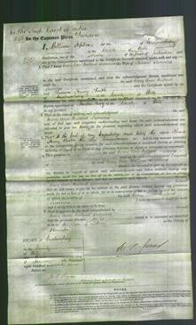 Court of Common Pleas - Mary Ann Millard Sumners-Original Ancestry