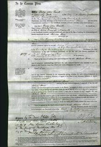 Court of Common Pleas - Helena Anne Maxwell-Original Ancestry