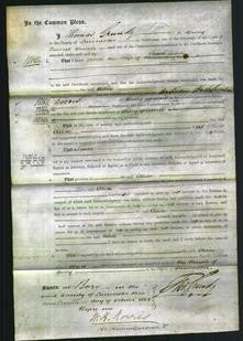 Court of Common Pleas - Alice Sudren-Original Ancestry