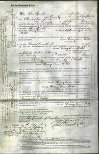 Court of Common Pleas - Mary Ann Wills-Original Ancestry