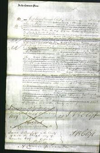 Court of Common Pleas - Christiana Haden-Original Ancestry