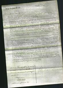 Court of Common Pleas - Elizabeth Rolf-Original Ancestry
