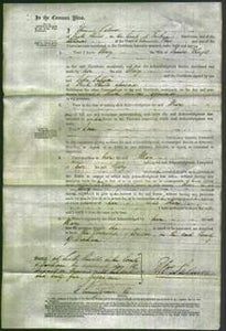 Court of Common Pleas - Mary Thrift-Original Ancestry