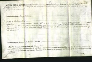 Court of Common Pleas - Mary Ann Bore-Original Ancestry