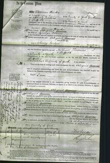 Court of Common Pleas - Abigail Turner-Original Ancestry