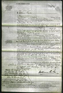 Court of Common Pleas - Elizabeth Amelia Janette Hendley-Original Ancestry