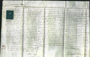 Court of Common Pleas - Esther Denbigh-Original Ancestry