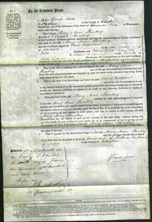Court of Common Pleas - Mary Anne Bentley-Original Ancestry