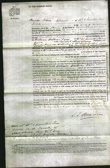 Court of Common Pleas - Dorothia Anne Parry-Original Ancestry