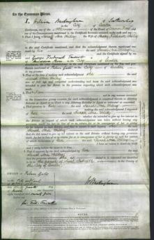 Court of Common Pleas - Sarah Ann Willey-Original Ancestry