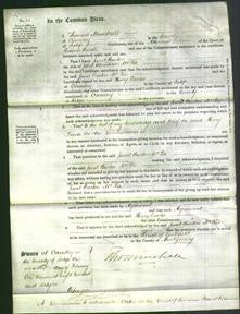 Court of Common Pleas - Janet Burton McKie-Original Ancestry