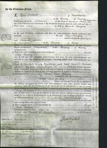 Court of Common Pleas - Jane Beagley-Original Ancestry