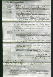 Court of Common Pleas - Elizabeth Edwards Sealy-Original Ancestry