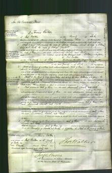 Court of Common Pleas - Susannah Jennan, Sarah Wray and Ruth Garbatt-Original Ancestry