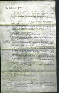 Court of Common Pleas - Annie Twells Firmin-Original Ancestry